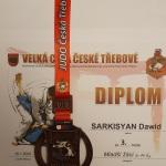 Dawid Sarkisyan klasa Vb